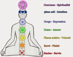 fluidvital : les centres vitaux ou chakras